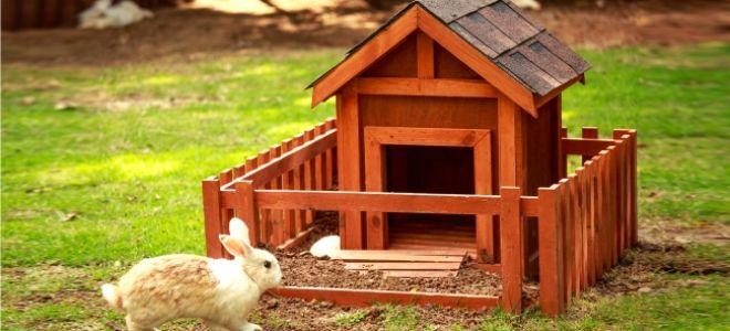 Как правильно сделать домик для кролика?